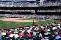 Petco Park (Padre Baseball Team)