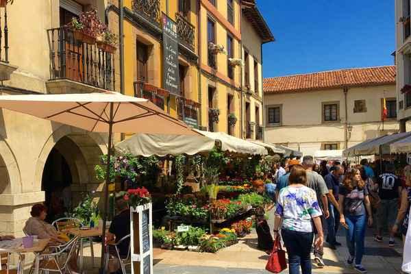 Apartamentos en asturias casas rurales en asturias - Casas rurales cerca de oviedo ...